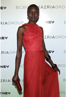 Alek Wek Profile Photo