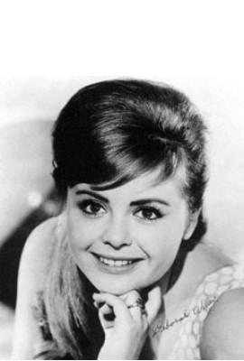 Deborah Walley Profile Photo