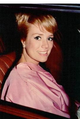 Inger Stevens Profile Photo