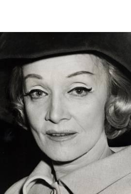 Marlene Dietrich Profile Photo