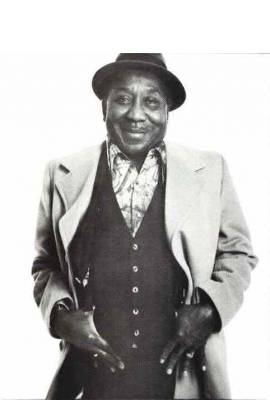 Muddy Waters Profile Photo