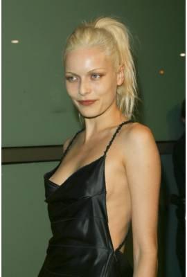 Rie Rasmussen Profile Photo