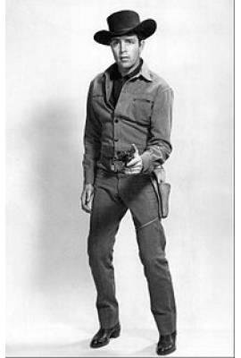 Dale Robertson  Profile Photo