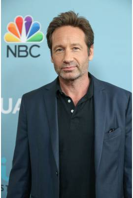 David Duchovny Profile Photo