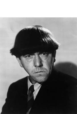 Moe Howard Profile Photo