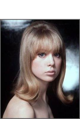 Pattie Boyd Profile Photo