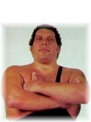 Andre The Giant Profile Photo