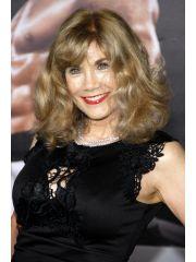 Barbi Benton Profile Photo