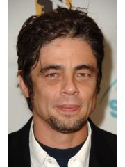 Benicio del Toro Profile Photo