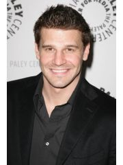 David Boreanaz Profile Photo