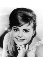 Deborah Walley Profile Photo