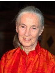 Jane Goodall Profile Photo