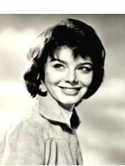 Janet Munro Profile Photo