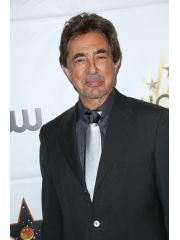 Joe Mantegna Profile Photo