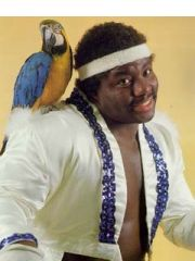 Koko B. Ware Profile Photo