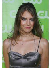 Lauren Cohan Profile Photo
