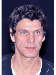 Marc Lavoine Profile Photo