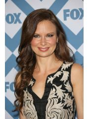 Mary Lynn Rajskub Profile Photo