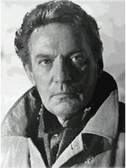 Peter Finch Profile Photo