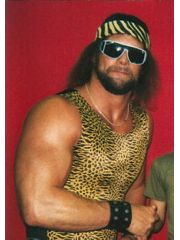 Randy Savage Profile Photo