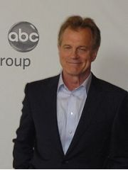 Stephen Collins Profile Photo
