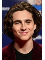 Timothee Chalamet Profile Photo