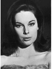 Tracy Reed Profile Photo