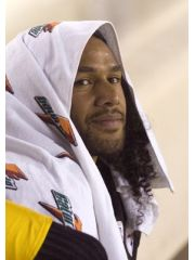 Troy Polamalu Profile Photo