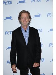 William H Macy Profile Photo
