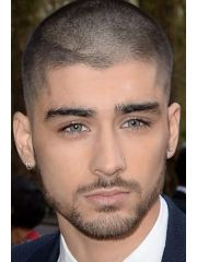 Link to Zayn Malik's Celebrity Profile
